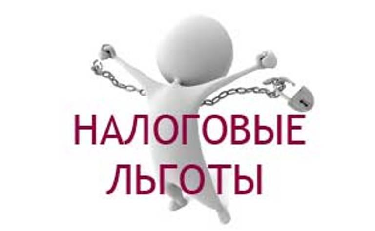 Получение ООО освобождения от НДС и необходимость подачи в этот период отчетности